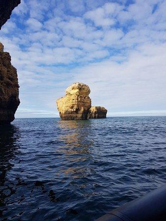Avvistamento Delfini e Visita alle Grotte Photo