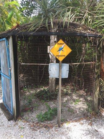 鸚鵡巢旅館照片