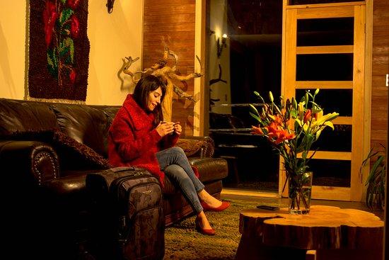 Hostal Casa Bosque : areas comunes, en que puedes compartir con los demás alojados