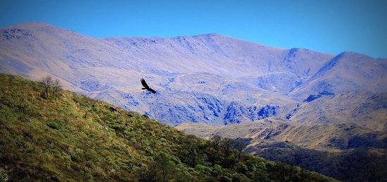 Outlanders: Paisajes asombrosos, vigilados desde el aire por ese guardián del cielo, el cóndor.