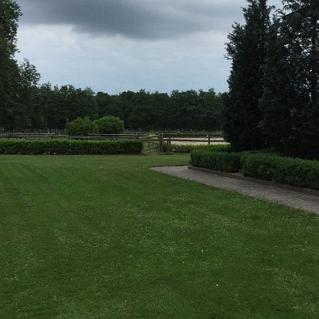 Landhotel & Reitanlage Linden照片