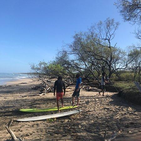 Snapper Surf School-bild