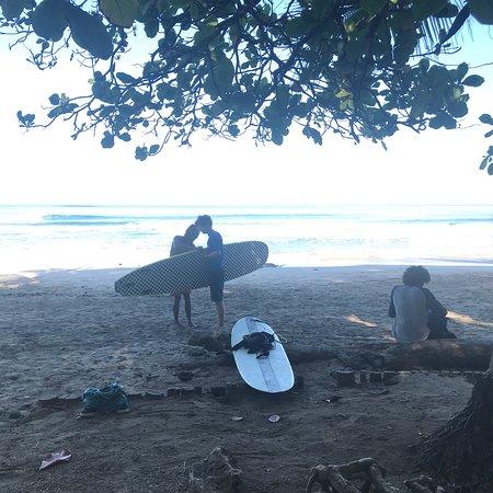 Snapper Surf School: photo1.jpg