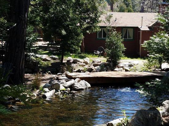 Twin Peaks, Califórnia: My little cabin. PERFECT!