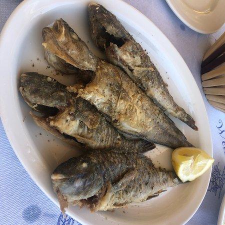 Zola, Greece: photo5.jpg