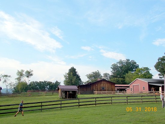 Candler, Carolina del Norte: more barns
