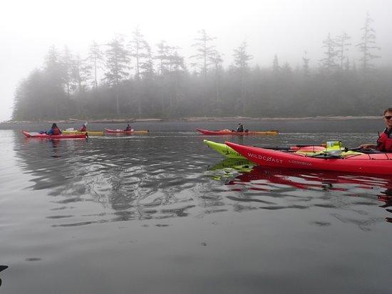 Wildcoast Adventures: Sea kayaking near Orca Camp in Johnstone Strait, BC