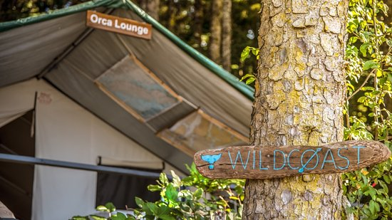 Wildcoast Adventures: Communal Gathering Tent at Orca Camp