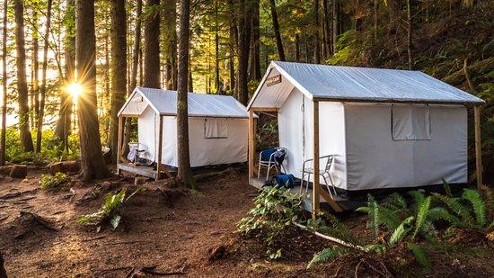 Wildcoast Adventures: Safari tents at Orca Camp