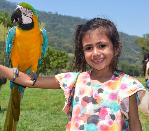 Portobello Resort & Safari: Safari