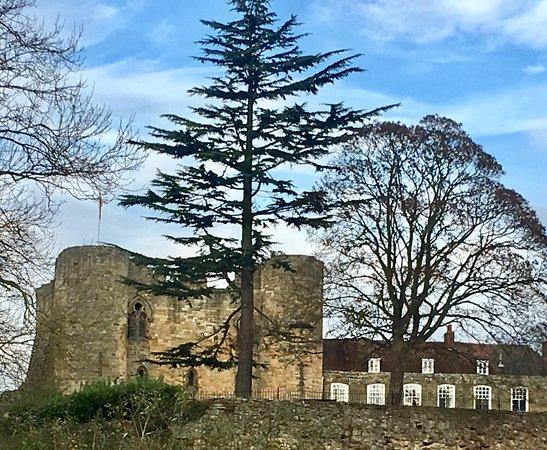 Tonbridge Castle: The Castle