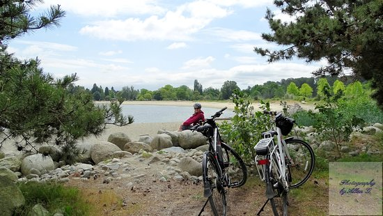 Cycle City Tours + Rentals: Bikes out by Jericho Beach
