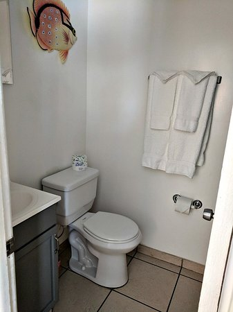 Beach House Hotel: Bathroom with stand-up shower