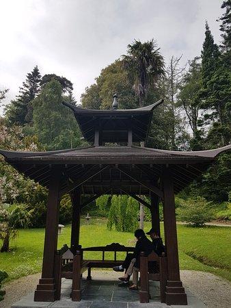 Powerscourt Gardens and House: 20180604_162509_large.jpg