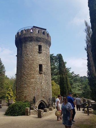 Powerscourt Gardens and House: 20180604_161011_large.jpg