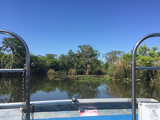 Black Hammock Adventures: View from front of boat