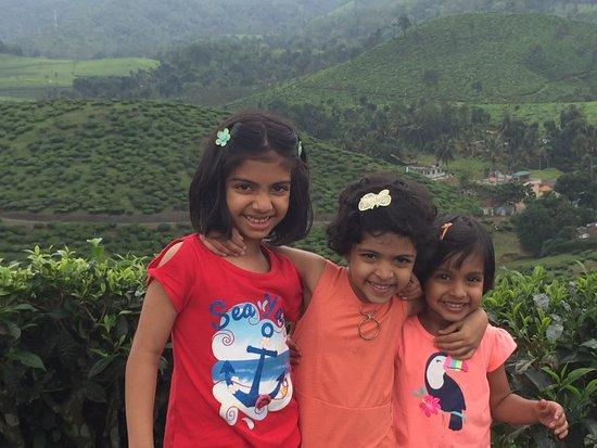 Vandiperiyar, Indien: Tea plantation in the resort property
