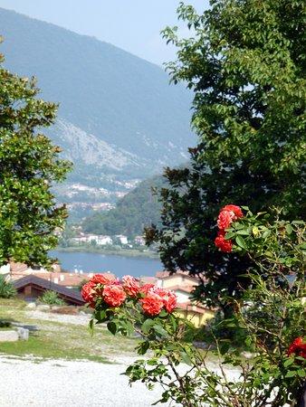 Il Poggio Dei Valaperta: Laggiù, tra le rose, il lago