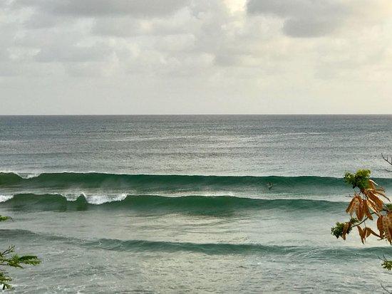 Atlantic Shores, Barbados: Surfing spot Freight's Bay in Barbados, Ride The Tied Surf School