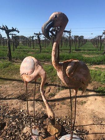 Mitchella Vineyard & Winery: Metal Flamingos in the Garden!