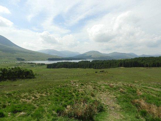 Excursion d'une journée à la découverte des Highlands écossais, du Loch Ness et de Glen Coe au départ d'Édimbourg Photo