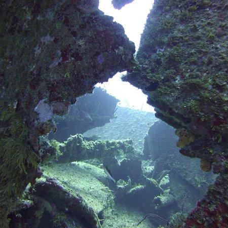 Foto de Ocean Connections Water Sports