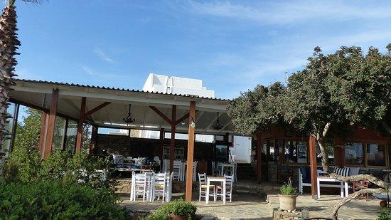Elounda Island Villas Art Cafe: La terrasse
