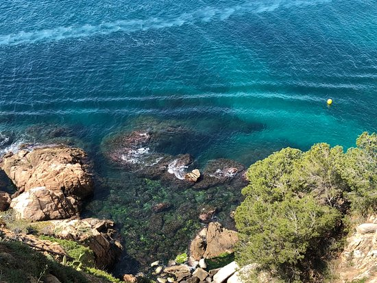 Day Trips Barcelona: Off the hillside in Tossa de Mar looking down on the coast of the Mediterranean...breath taking!
