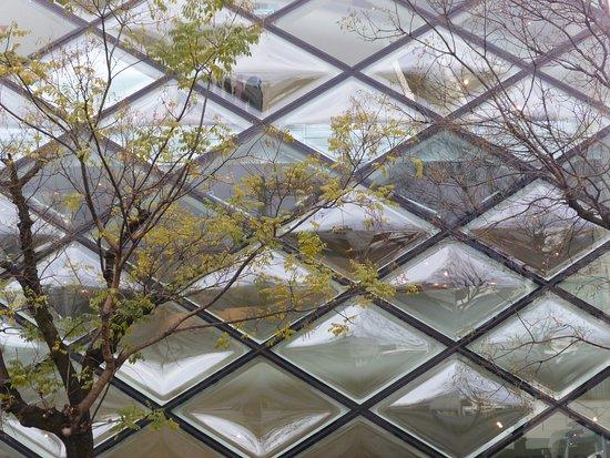 Tokyo Urban Adventures照片