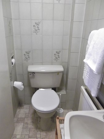Townhouse Hotel : small cramped toilet