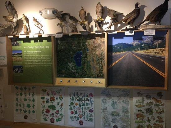 Galena Creek Regional Park: educational exhibit