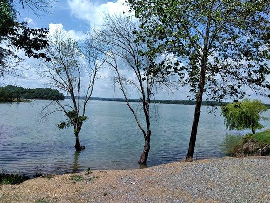 Douglas Lake May 2018
