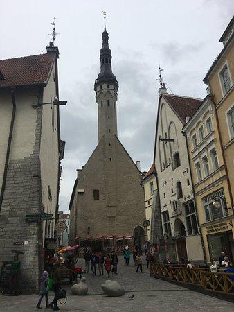 Tallinn Old Town: Towerazzi
