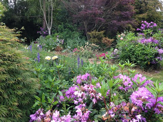Morigny, Frankrig: Un des nombreux coins du magnifique jardin