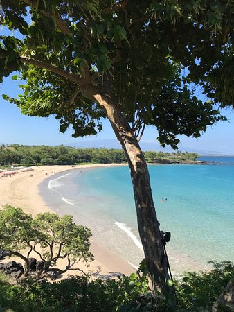Mauna Kea Beach Hotel, Autograph Collection: View from Manta