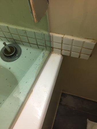 Hotel Schloss Weikersdorf Mosaik Verkleidung Bad Und Schimmel Darauf An Der