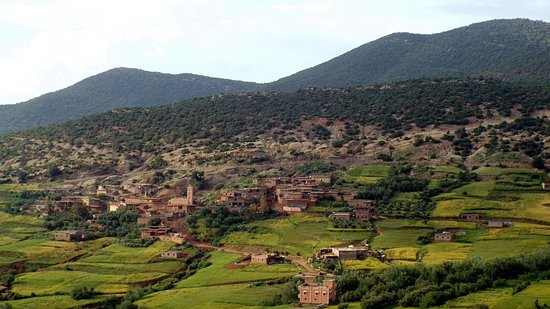 Full-Day Trip from Marrakech to Atlas Mountains and The Ancient Ait Ben Haddou: Atlas Mountains - Lower regions
