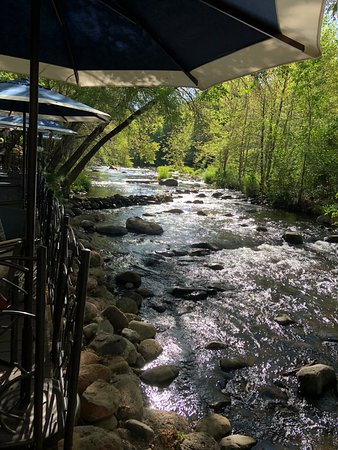 L'Auberge de Sedona: looking at creek from dining area