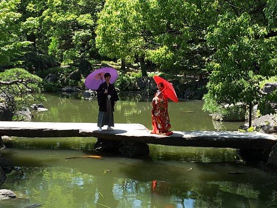 Kiyosumi Teien-billede