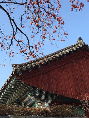 写真Gyeongju City Tour枚