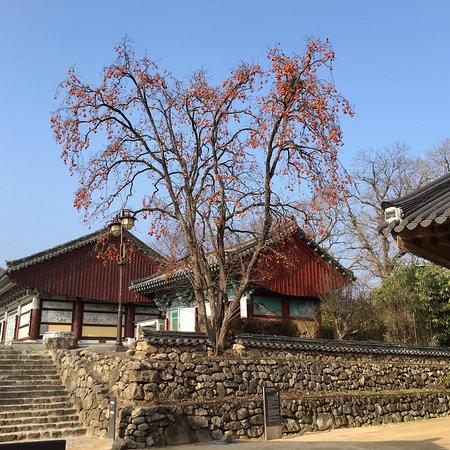 Gyeongju City Tour照片
