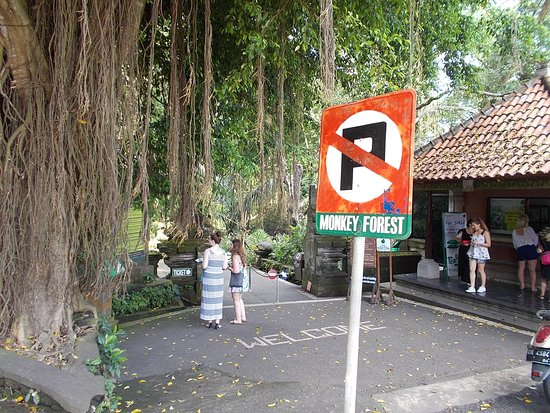 Sacred Monkey Forest Sanctuary: Just outside the Forest