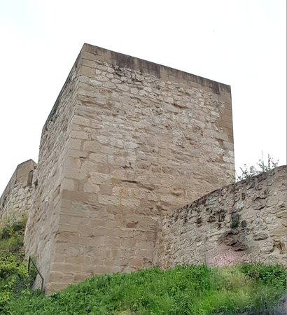 Castillo de Miranda de Ebro: TORREON