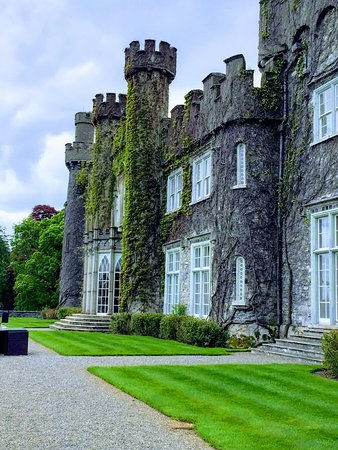 Dublin Falconry: Luttrellstown Castle Resort