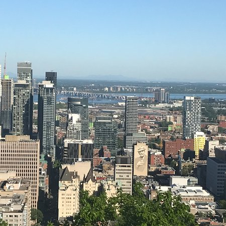 มอนต์รอแยล: Vista desde Mont Royale