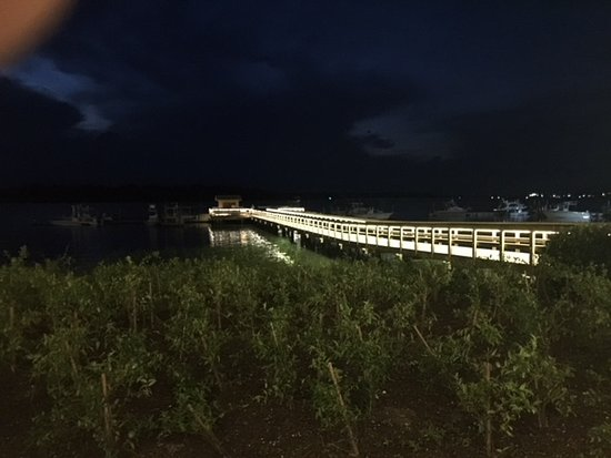 The Skull Creek Boathouse : The same view from out table at night