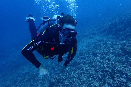 AivyMaes Divers Dauin: Diving Dauin
