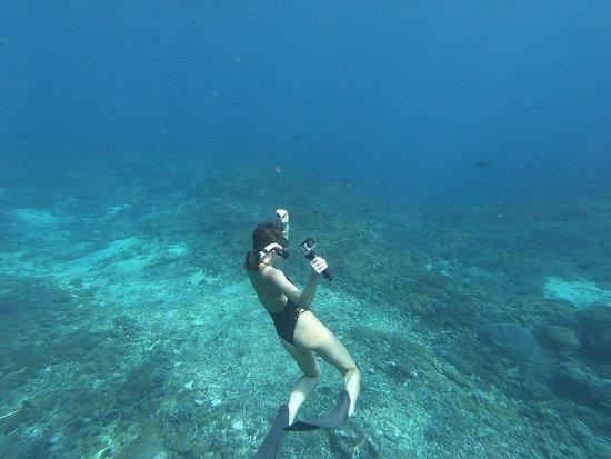 Supi Tour Nusa Penida : MANTA RAY SNORKELING NUSA PENIDA ( 082236176260 )