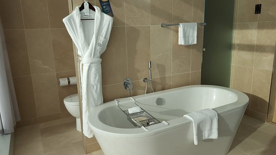 Sofitel Sydney Darling Harbour: Bath and shower and toilet area