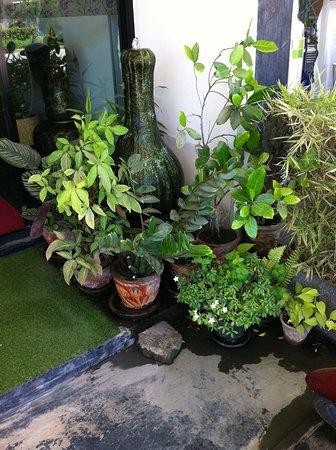 มั่งคั่ง นวดไทย: Garden
